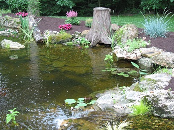 Nature 39 s re creations backyard ponds in st louis for Backyard pond installation